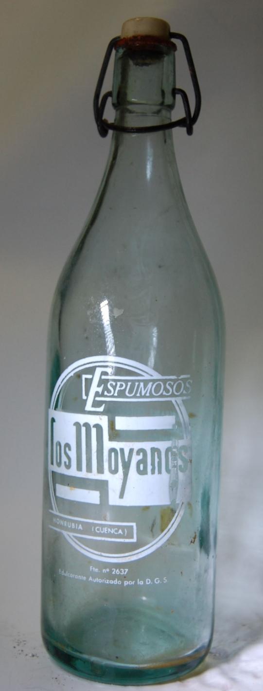20131106140926-los-moyanos.jpg